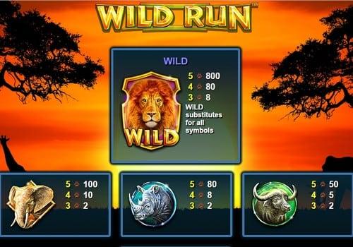 Символы и коэффициенты в автомате Wild Run